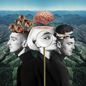 CLEAN BANDIT-WHAT IS LOVE DLX