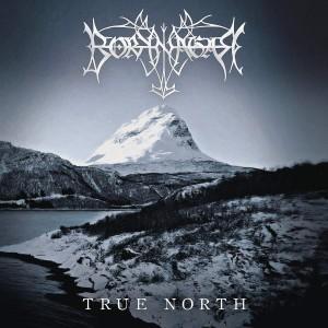 BORKNAGAR-TRUE NORTH LTD