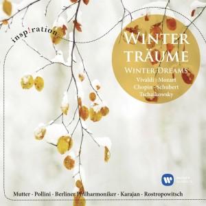 VARIOUS ARTISTS-WINTER DREAMS: VIVALDI, MOZART, CHOPIN, SCHUBERT, TSCHAIKOWSKY