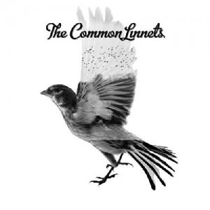 COMMON LINNETS-COMMON LINNETS