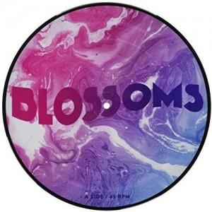 "BLOSSOMS-UNPLUGGED AT FESTIVAL NO.6 10"" (RSD 2017)"