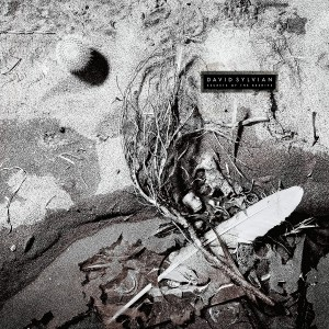 DAVID SYLVIAN-SECRETS OF THE BEEHIVE