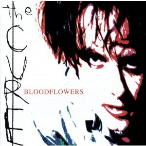 CURE-BLOODFLOWERS