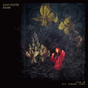 JULIA HOLTER-AVIARY
