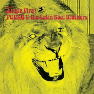 PUCHO AND THE LATIN SOUL BROTHERS-JUNGLE FIRE!