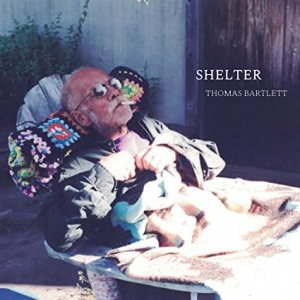 THOMAS BARTLETT-SHELTER (VINYL)