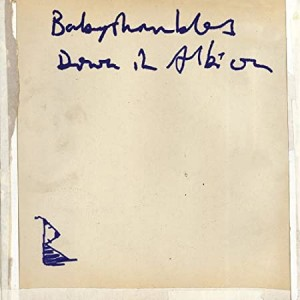 BABYSHAMBLES-DOWN IN ALBION