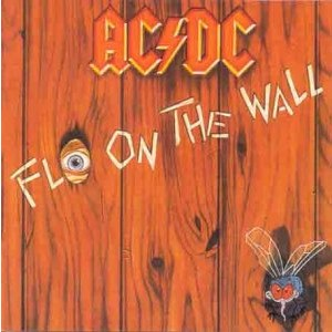 AC/DC-FLY ON THE WALL