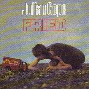 JULIAN COPE-FRIED
