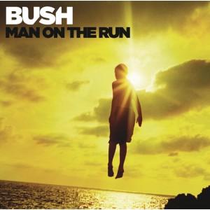 BUSH-MAN ON THE RUN