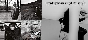 David Sylvian